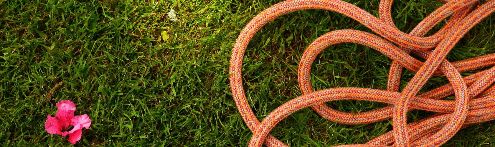 climbing ropes in grass